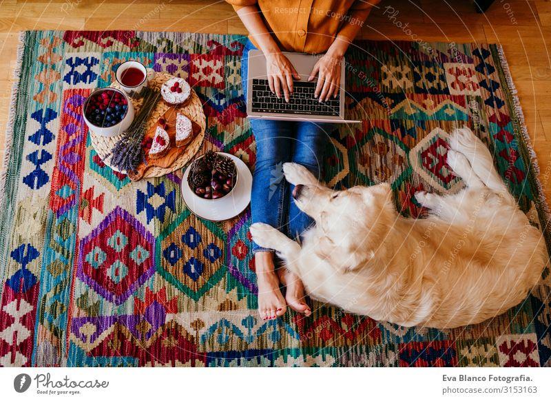 junge frau, die zu hause am laptop arbeitet. süßer golden retriever-hund daneben. gesunde frühstückszeit. technik und lebensstil im haus Notebook