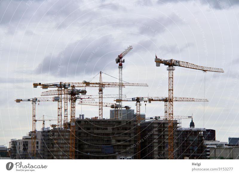 Großbaustelle mit vielen hohen Kränen vor grau bewölktem Himmel Hamburg Bauwerk Gebäude Architektur Baustelle Stein Beton Metall Arbeit & Erwerbstätigkeit