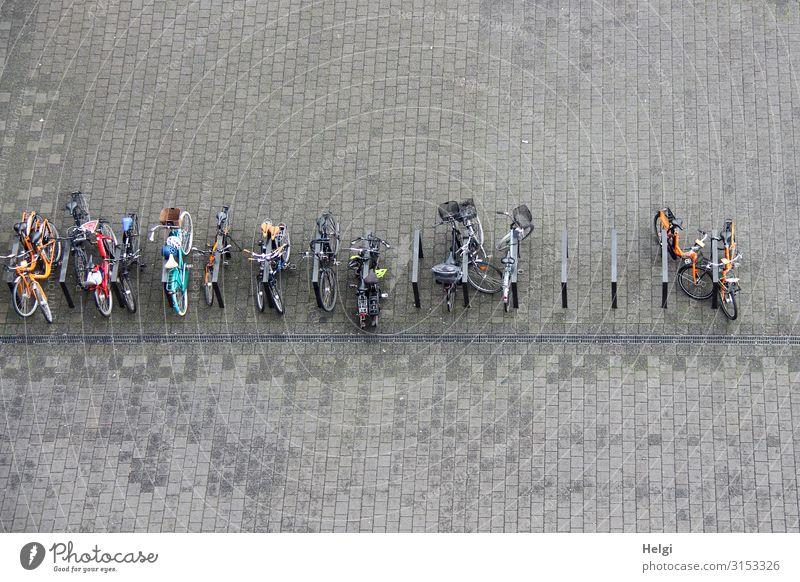 viele Fahrräder stehen angeschlossen auf einem großen gepflasterten Platz, Vogelperspektive Hamburg Verkehrsmittel Fahrradfahren Fahrradständer Fahrradparkplatz