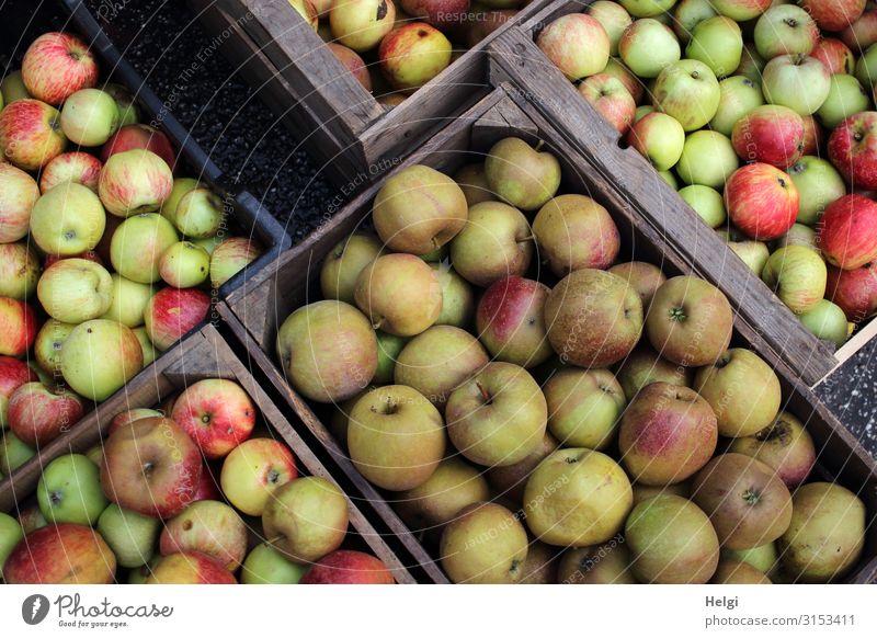 mehrere Kisten mit  verschiedenen frisch geernteten Äpfeln Lebensmittel Frucht Apfel Ernährung Bioprodukte Vegetarische Ernährung Holz liegen authentisch eckig