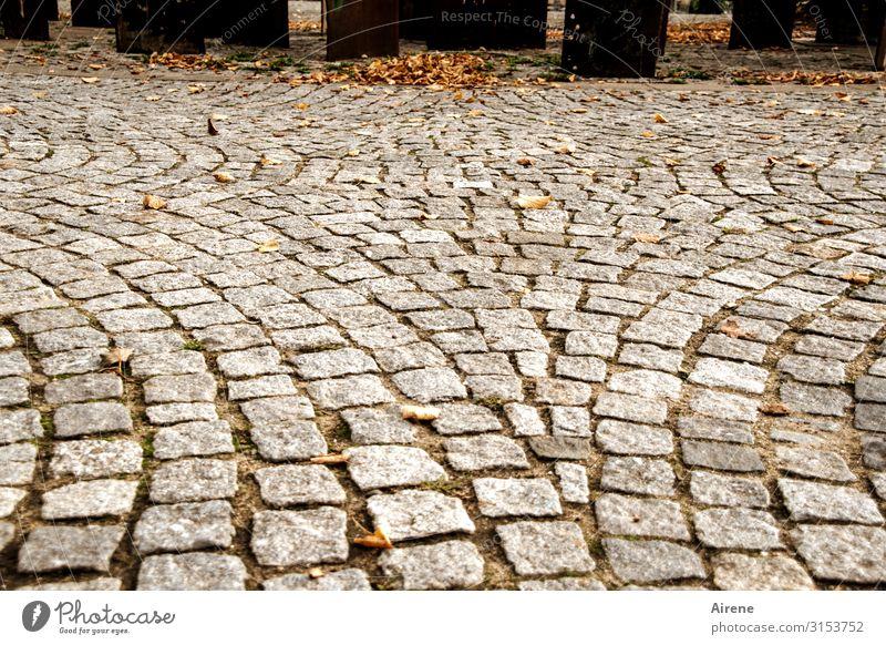 betreten | UT Hamburg Herbst Herbstlaub Kopfsteinpflaster Platz Fußgängerzone Denkmal frieren kalt Stadt braun grau orange Reinlichkeit Sauberkeit Einsamkeit