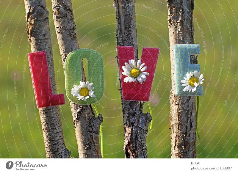 Bunter, kitschiger, schöner Schriftzug: Love, mit aufgeklebten Buchstaben aus Stoff mit Gänseblümchen dekoriert, hängt an natürlichen Stöcken vom Baum, draussen in der Natur, vor einer grünen Wiese.