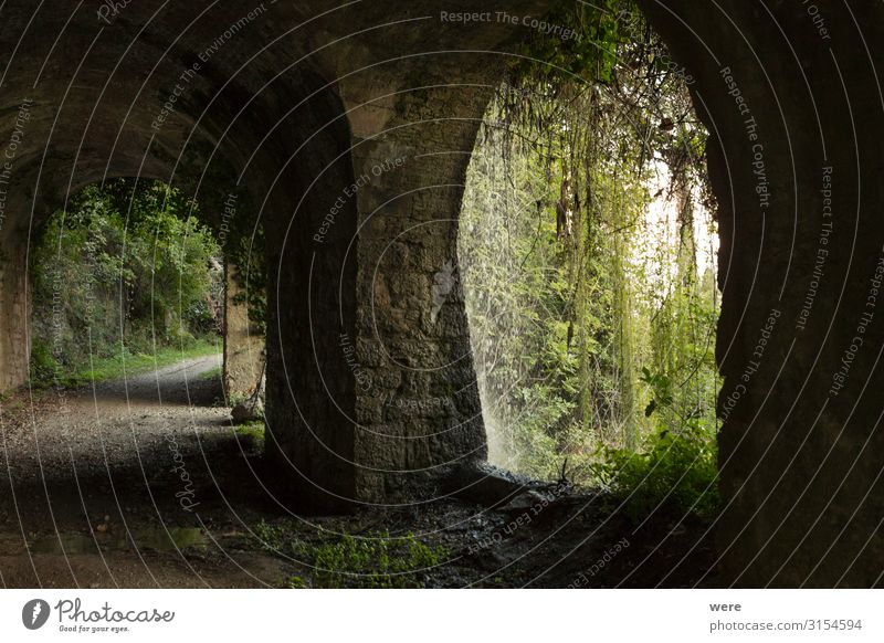 old road with tunnel on the shores of Lake Garda alt Wand Mauer retro Bauwerk Verkehrswege Tunnel