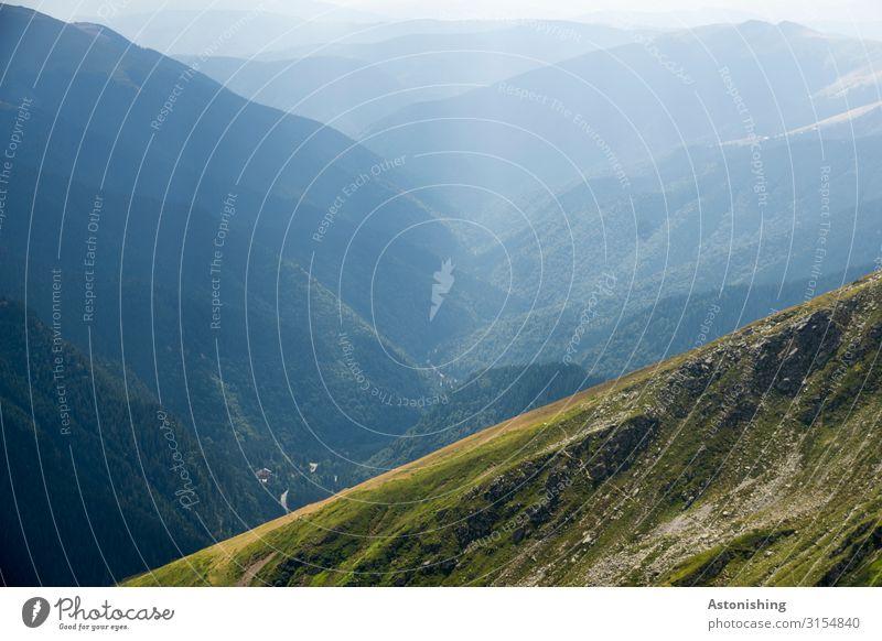 Tal Umwelt Natur Landschaft Pflanze Luft Himmel Horizont Sommer Schönes Wetter Baum Gras Wald Berge u. Gebirge Südkarpaten Karpaten Schlucht Rumänien Straße