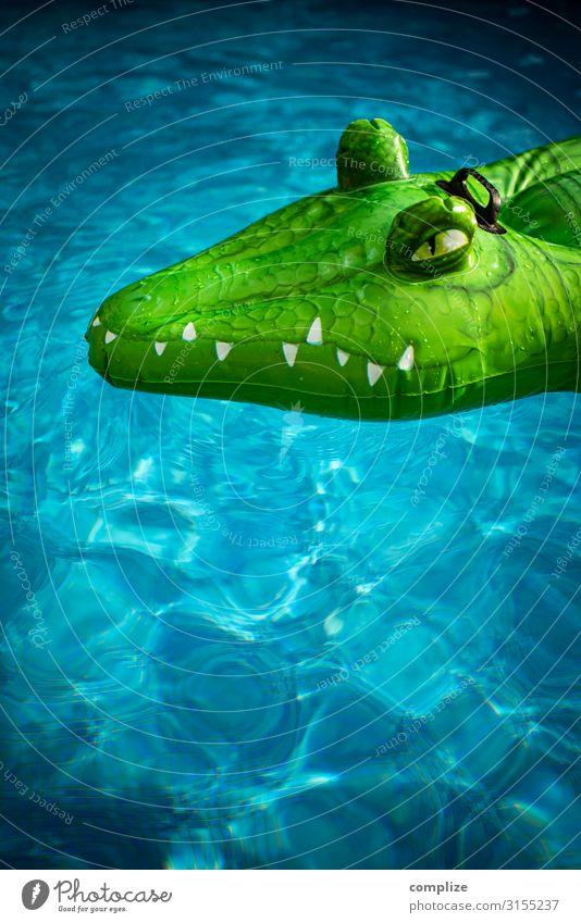 Aufblasbares Krokodil im Pool Kind Ferien & Urlaub & Reisen Sommer Sonne Meer Tier Freude Strand Gesundheit Tourismus Party Schwimmen & Baden Angst Wildtier