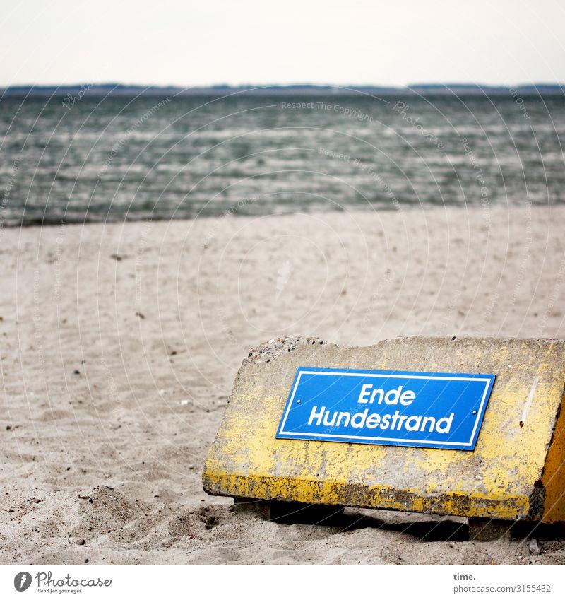 Hundeschule 2.0 | Geschriebenes Bildung Verwaltung Sand Horizont Wellen Küste Strand Ostsee Barriere Betonklotz Schriftzeichen Schilder & Markierungen