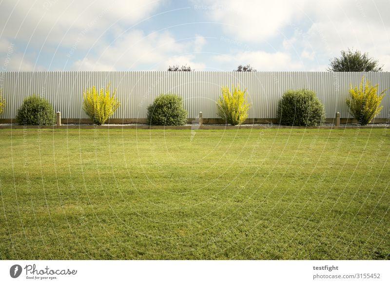 garten Pflanze Gras Sträucher Grünpflanze Garten grün Zaun Mauer Rasen Farbfoto Außenaufnahme Textfreiraum oben Textfreiraum unten