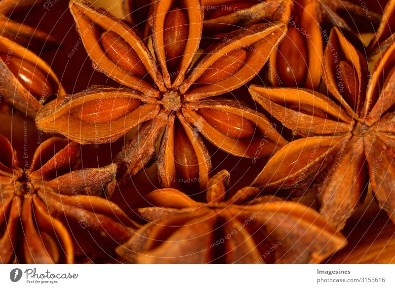 """Sternanis Lebensmittel Kräuter & Gewürze Ernährung Asiatische Küche trocken braun orange genießen Gesundheit """"Weihnachtsgewürz weihnachten zutat kochen backen"""