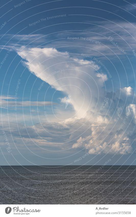 Wolken über dem Meer Natur Landschaft Urelemente Wasser Himmel Sommer Schönes Wetter Nordsee Blick außergewöhnlich bedrohlich gigantisch schön blau weiß Gefühle