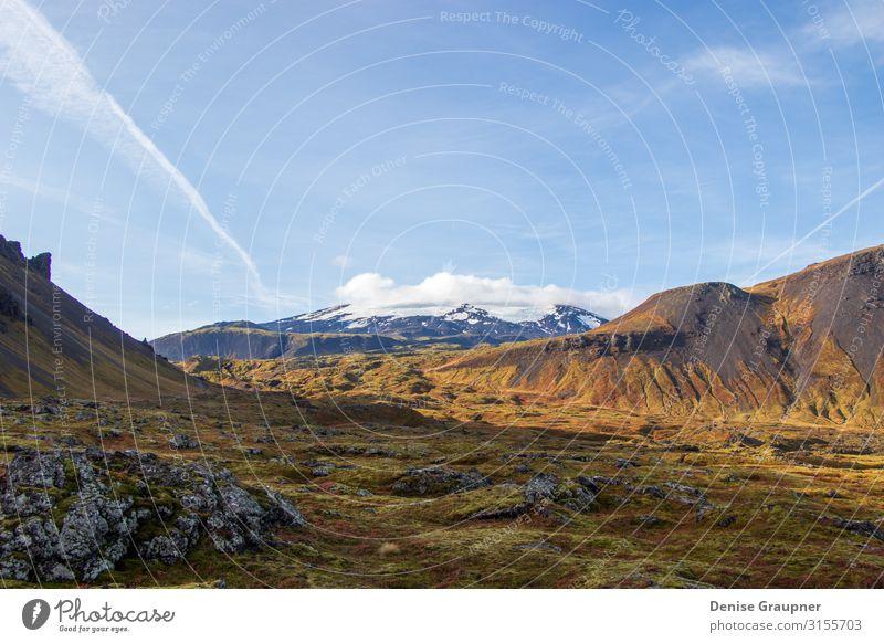 Snow-covered mountain and Icelandic moss Ferien & Urlaub & Reisen Tourismus Ausflug Abenteuer Sommer Winter Umwelt Natur Landschaft Sand Klima Klimawandel