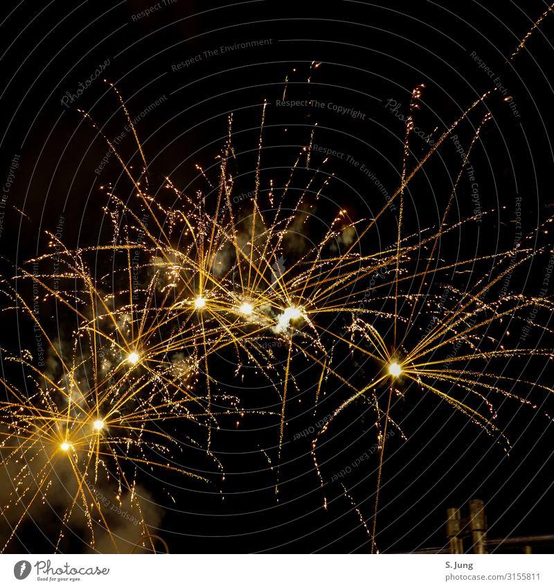 Feuerwerk Freude Glück Freizeit & Hobby Ferien & Urlaub & Reisen Ausflug Abenteuer Ferne Freiheit Sightseeing Städtereise Sommer Nachtleben Entertainment Party