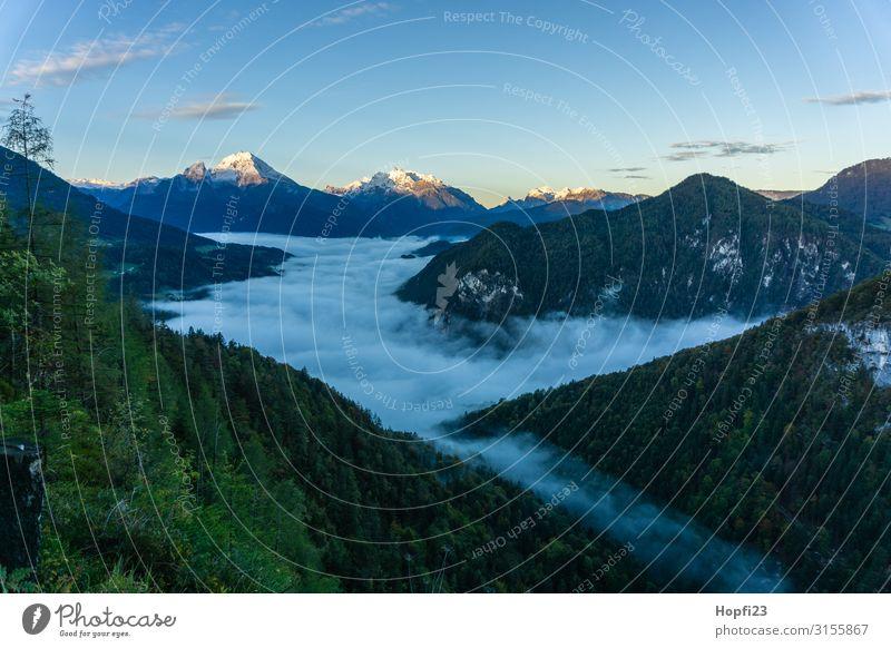 Alpen im Berchtesgadener Land Umwelt Natur Landschaft Pflanze Himmel Wolken Sonne Herbst Schönes Wetter Nebel Baum Gras Wald Felsen Berge u. Gebirge Gipfel Diät