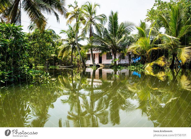 House in the Kerala backwaters Ferien & Urlaub & Reisen Tourismus Abenteuer Ferne Sightseeing Sommer Natur exotisch Küste Flussufer Haus entdecken Erholung
