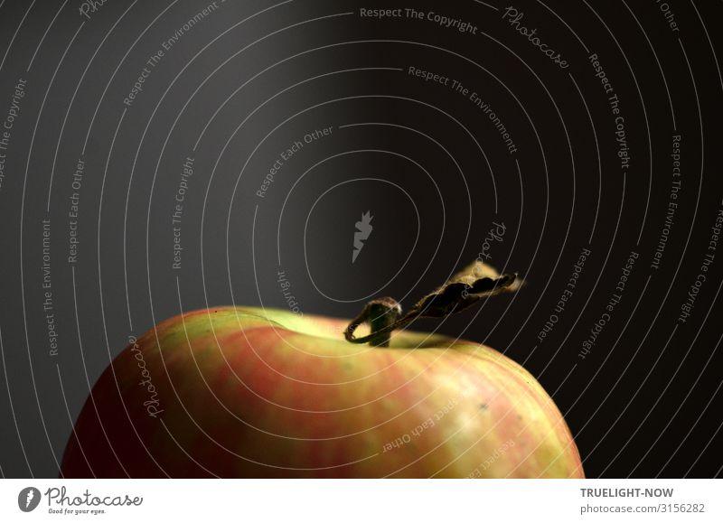 Rot-grüner Apfel in Teilansicht nah, mit Stiel und trockenem Blatt, vor dunkel grauem Hintergrund Apfelstiel Nahaufnahme Farbfoto Frucht Bioprodukte Gesundheit