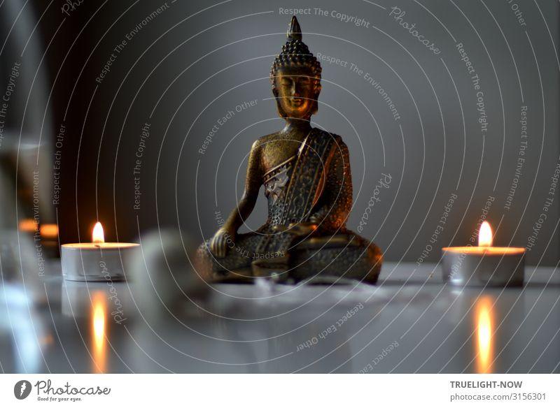 Weltschmerz | ...ist auch keine Lösung Stil Glück Wellness harmonisch Wohlgefühl Zufriedenheit Erholung ruhig Meditation Häusliches Leben