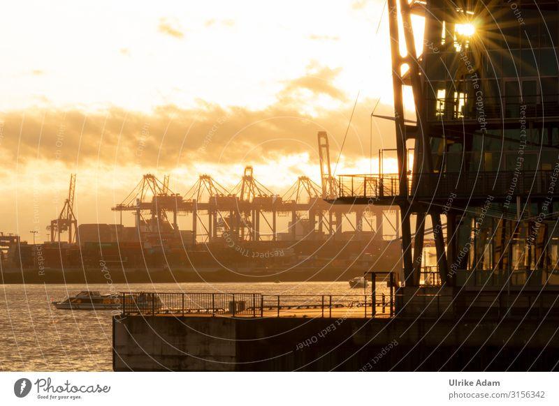 Abendsonne im Hafen Umwelt Wasser Wolken Schönes Wetter Hamburg Hamburger Hafen Deutschland leuchten gigantisch orange Güterverkehr & Logistik Wasserfahrzeug