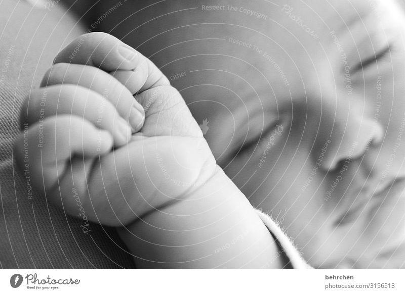 vollkommen Baby Junge Familie & Verwandtschaft Kindheit Haut Gesicht Auge Nase Mund Lippen Hand Finger 0-12 Monate schlafen Glück Zufriedenheit Schutz
