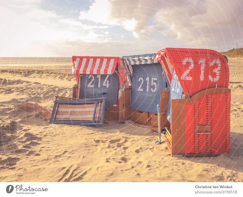 Strandkörbe Ferien & Urlaub & Reisen Tourismus Insel Umwelt Natur Landschaft Sand Himmel Wolken Horizont Sonnenlicht Herbst Nordsee Borkum Strandkorb Liegestuhl