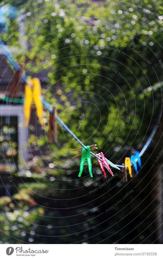 Englische Wäscheklammern Ferien & Urlaub & Reisen Häusliches Leben Umwelt Natur Garten Großbritannien Yorkshire Dorf Haus Wäscheleine Kunststoff hängen einfach