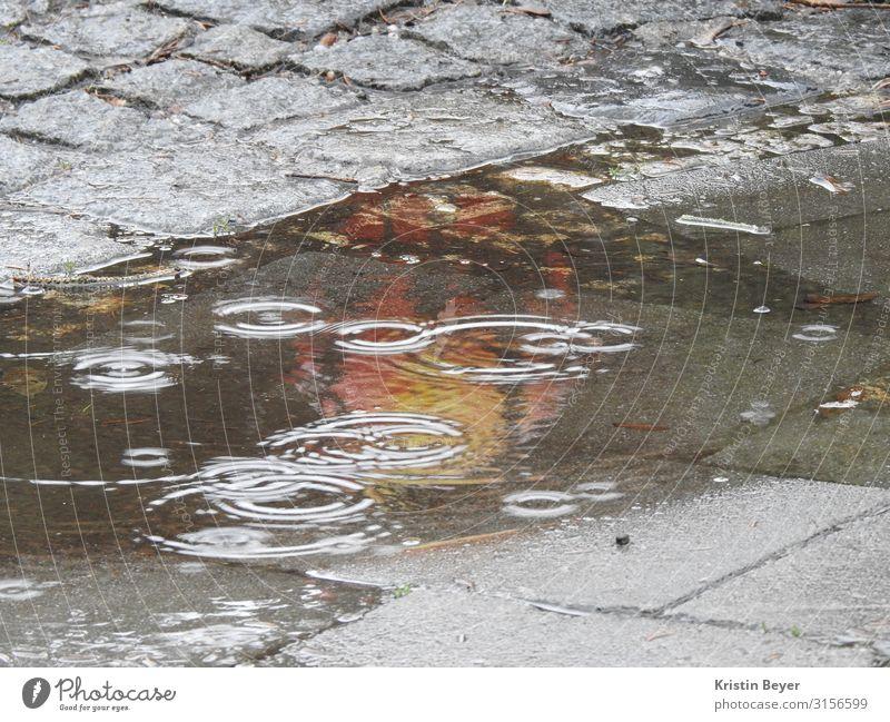 Schimmer im Regen Ausflug Feierabend Umwelt Landschaft Erde schlechtes Wetter Stadt Stadtzentrum Pflastersteine Straße Stein Wasser dunkel kalt nass Klima Natur