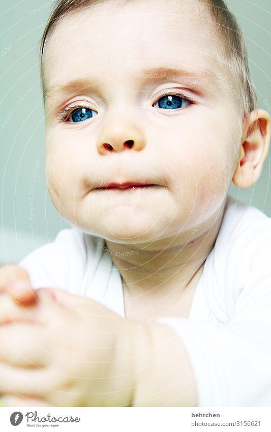ein denker Baby Kindheit Sohn blaue augen Junge Gesicht Liebe 0-12 Monate Innenaufnahme Farbfoto Porträt aufmerksam niedlich schön nachdenklich träumen