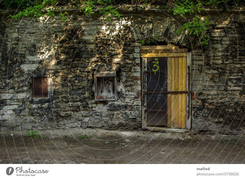 Access Denied Tallinn Estland Hauptstadt Stadtzentrum Haus Ruine Mauer Wand Tür Ziffern & Zahlen alt dunkel historisch braun gelb grau grün Verfall