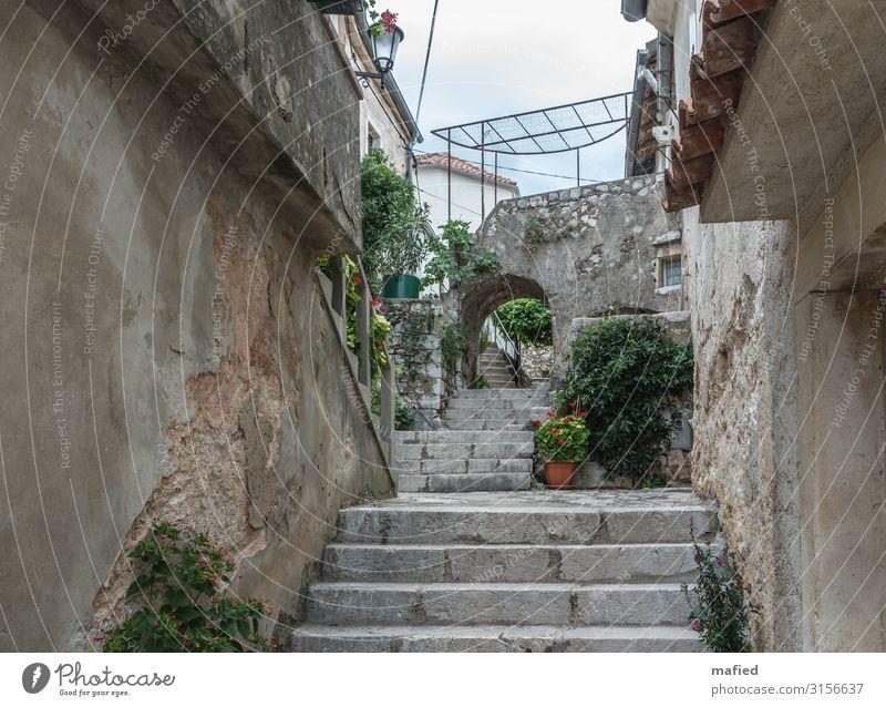 Kroatien 2015 Brsec Dorf Altstadt Mauer Wand Treppe blau braun grau grün Erholung Ferien & Urlaub & Reisen ruhig Farbfoto Gedeckte Farben Außenaufnahme