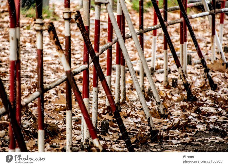 eindeutig | UT Hamburg Herbst Herbstlaub Barriere Straßensperre Gitter Metallzaun Hinweisschild Warnschild Verkehrszeichen Linie braun rot weiß Sicherheit