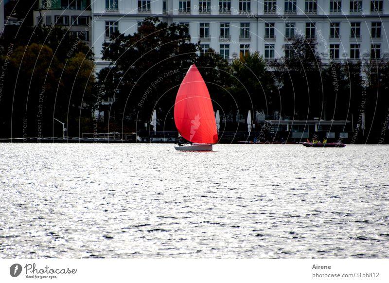 Mut zur Farbe | UT Hamburg Seeufer Stadt Hafenstadt bevölkert Fassade Binnenschifffahrt Segelboot Bewegung ästhetisch außergewöhnlich elegant frisch