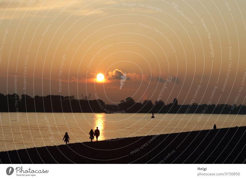 Silhouetten von flanierenden Menschen  in der Abendsonne am Elbstrand in Hamburg 3 Umwelt Natur Landschaft Himmel Wolken Herbst Schönes Wetter Flussufer Elbe