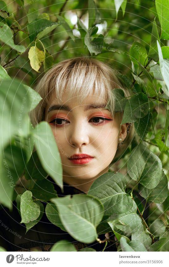Asiatisches Weibchen in grünen Blättern, flacher selektiver Fokus Asiate blond Nahaufnahme Auge Gesicht Frau Junge Frau Hand Lifestyle Park Mensch Jugendliche