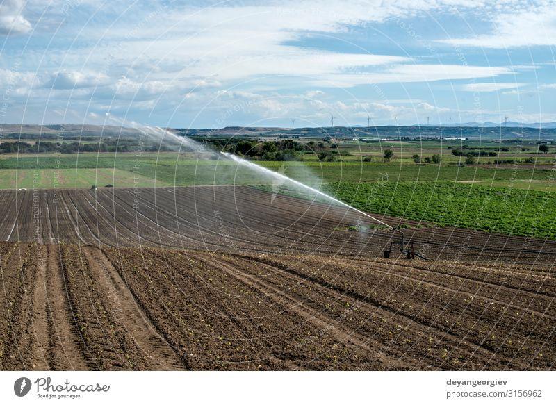 Bewässerung von Grünpflanzen und gepflügten Böden. Ernährung Sommer Arbeit & Erwerbstätigkeit Industrie Werkzeug Technik & Technologie Metall Wachstum grün