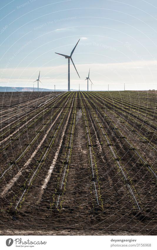 Windgenerator in landwirtschaftlichen Flächen. Sommer Industrie Technik & Technologie Umwelt Natur Landschaft Erde Himmel Wolken nachhaltig blau Energie Turbine