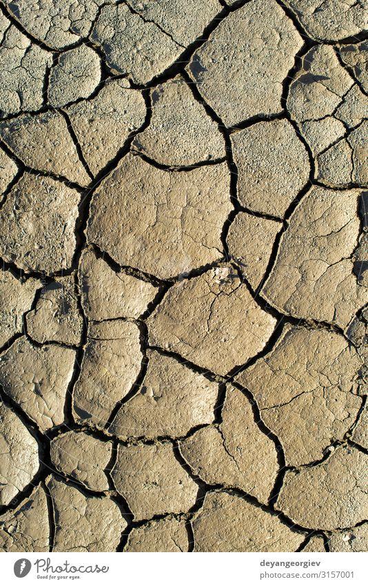 Gerissene Bodentextur. Harte Schatten und Sonne. Getrockneter Boden. Sommer Umwelt Natur Erde Klima Dürre heiß natürlich braun Riss Konsistenz trocknen