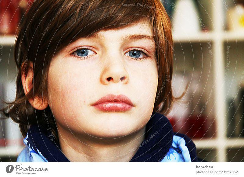 . erwartungsvoll Erwartung träumen Liebe Innenaufnahme Farbfoto hübsch aufmerksam blaue augen Nahaufnahme Kind Junge Familie & Verwandtschaft Kindheit Auge Nase