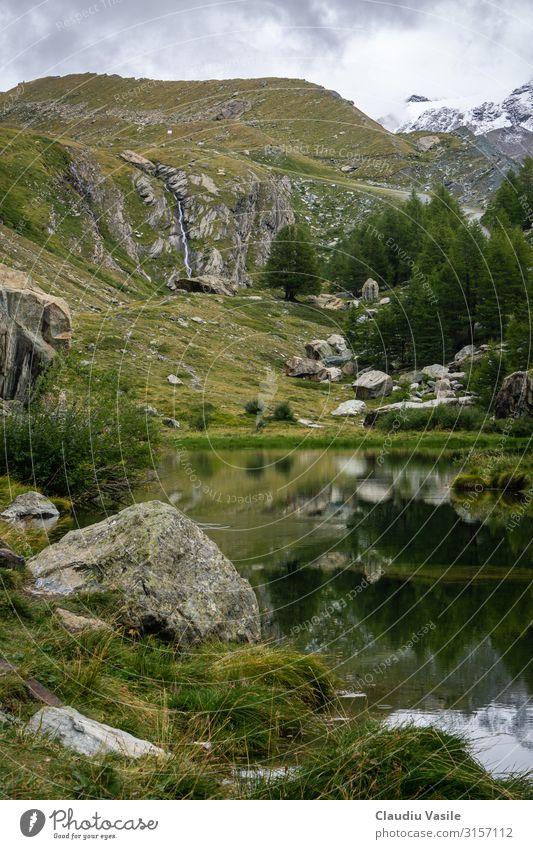 Grüner See an der Baumgrenze hoch in den Schweizer Alpen Ferien & Urlaub & Reisen Tourismus Abenteuer Sightseeing wandern Natur Landschaft Pflanze Wasser Wolken