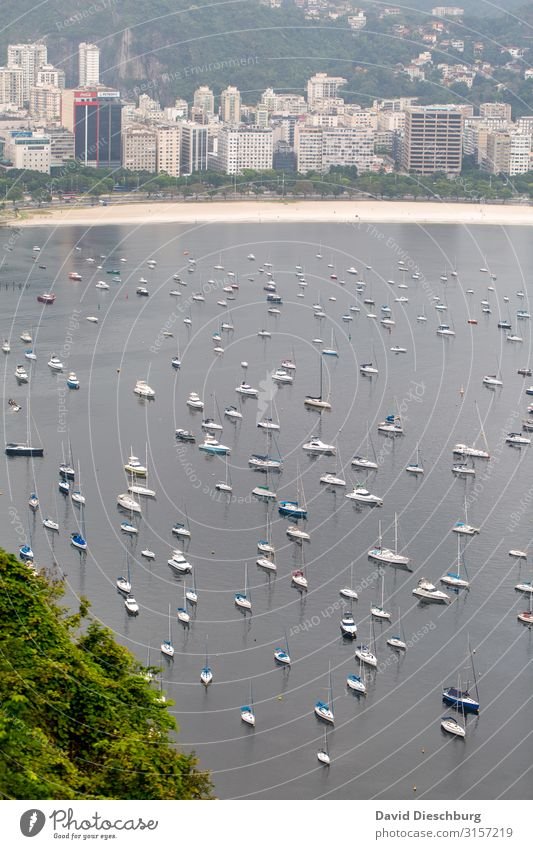 Hafen von Rio de Janeiro Ferien & Urlaub & Reisen Tourismus Sightseeing Städtereise Landschaft Urwald Wellen Küste Strand Bucht Meer Stadt Stadtrand
