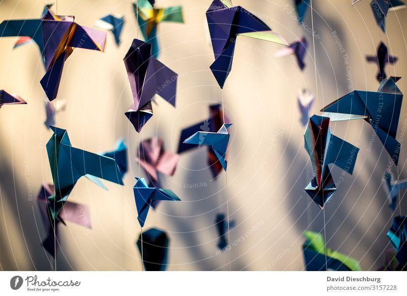 Origami Freizeit & Hobby Handarbeit Kunst Künstler Ausstellung Museum Kunstwerk Skulptur Schreibwaren Papier Sammlung Zeichen einzigartig Gelassenheit
