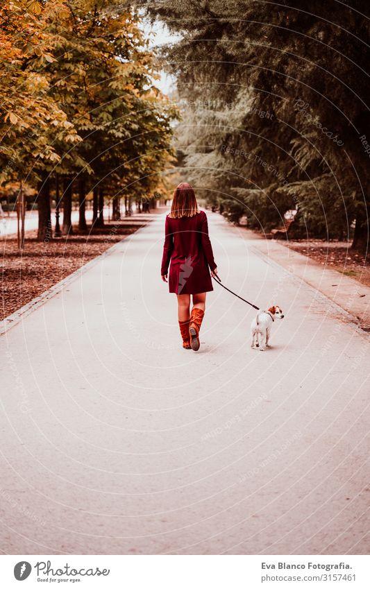junge Frau und ihr süßer Jack-Russell-Hund beim Spaziergang in einem Park. Konzept der Liebe zu Tieren laufen Herbst Wald Baum Jack-Russell-Terrier niedlich