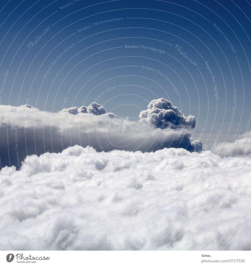 Wolke 7   abgehoben wolke schönes wetter fliegen horizont watte luft wind ausblick panorama freiheit weltall Atmosphäre reisen