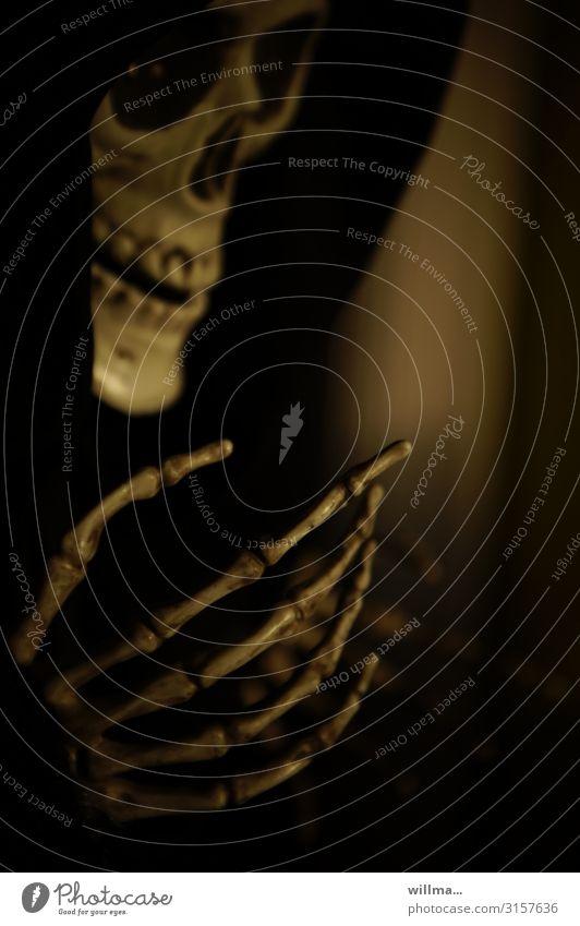 reich mir die hand, mein leben Halloween Skelett Kapuze Umhang bedrohlich gruselig Hand Schädel Sensenmann Knochen Porträt Tod Angst Todesangst furchtbar dunkel