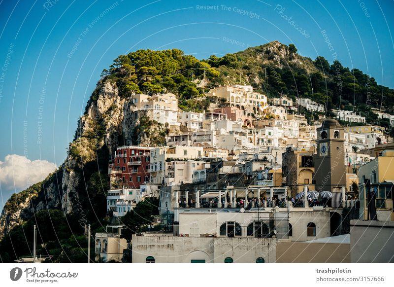 Capri Hafen Ferien & Urlaub & Reisen Tourismus Ausflug Abenteuer Ferne Freiheit Sightseeing Kreuzfahrt Italien Europa Hafenstadt Sehenswürdigkeit Felsen