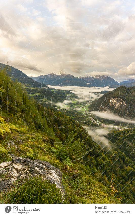 Alpen im Berchtesgadener Land Umwelt Natur Landschaft Pflanze Himmel Wolken Sonnenaufgang Sonnenuntergang Herbst Wetter Schönes Wetter Nebel Baum Gras Wald