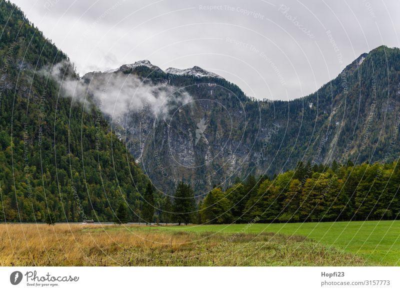 Alpen im Berchtesgadener Land Umwelt Natur Landschaft Pflanze nur Himmel Wolken Herbst Wetter Nebel Baum Gras Wald Felsen Berge u. Gebirge Gipfel Diät Bewegung