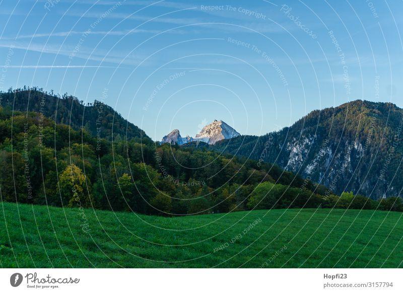 Alpen im Berchtesgadener Land Umwelt Natur Landschaft Pflanze Himmel Wolkenloser Himmel Sonne Herbst Schönes Wetter Baum Gras Felsen Berge u. Gebirge Gipfel
