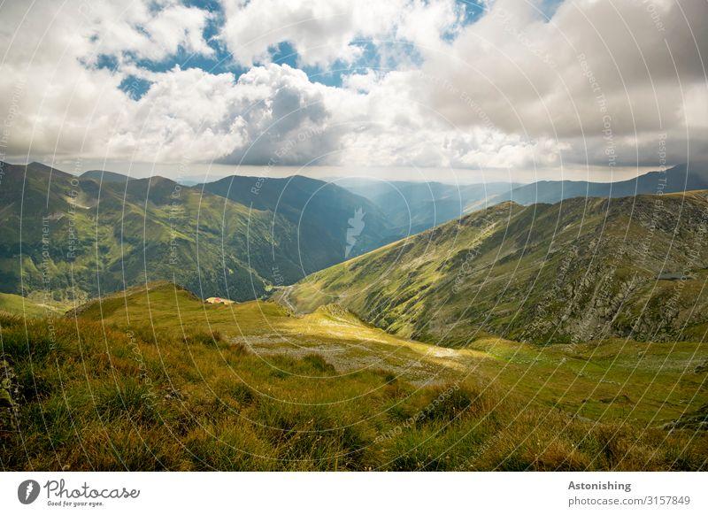 Südkarpaten Umwelt Natur Landschaft Pflanze Himmel Wolken Horizont Sommer Wetter Schönes Wetter Gras Sträucher Wald Alpen Berge u. Gebirge Karpaten Gipfel
