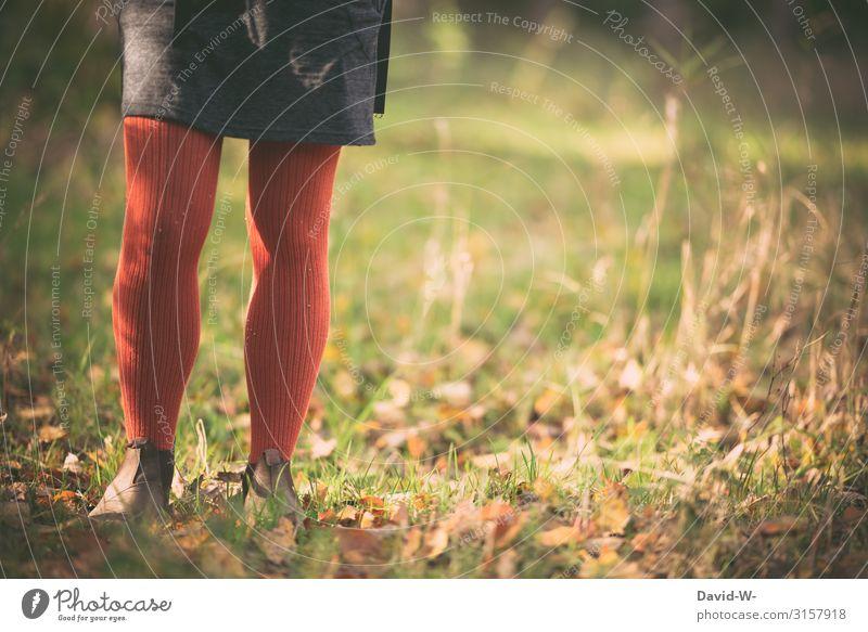 nostalgisch im Herbst Mensch feminin Junge Frau Jugendliche Erwachsene Leben 1 13-18 Jahre 18-30 Jahre Kunst Umwelt Natur Klima Klimawandel Schönes Wetter Wiese