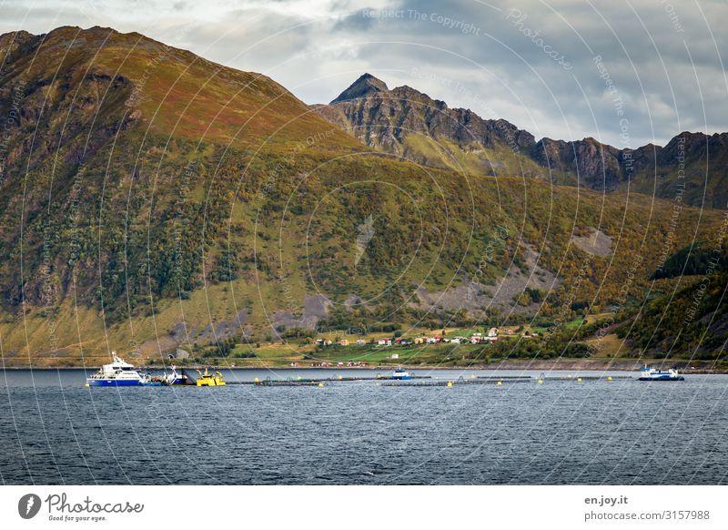 Noch mehr Gegend Ferien & Urlaub & Reisen Tourismus Ausflug Ferne Kreuzfahrt Umwelt Natur Landschaft Wolken Herbst Hügel Berge u. Gebirge Küste Fjord Insel