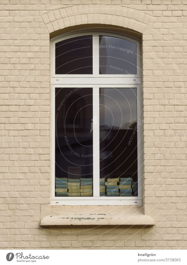 Schule Haus Schulgebäude Grundschule Mauer Wand Fenster Buch Kommunizieren schwarz weiß Bildung Gesellschaft (Soziologie) Inspiration Kindheit lernen Wissen