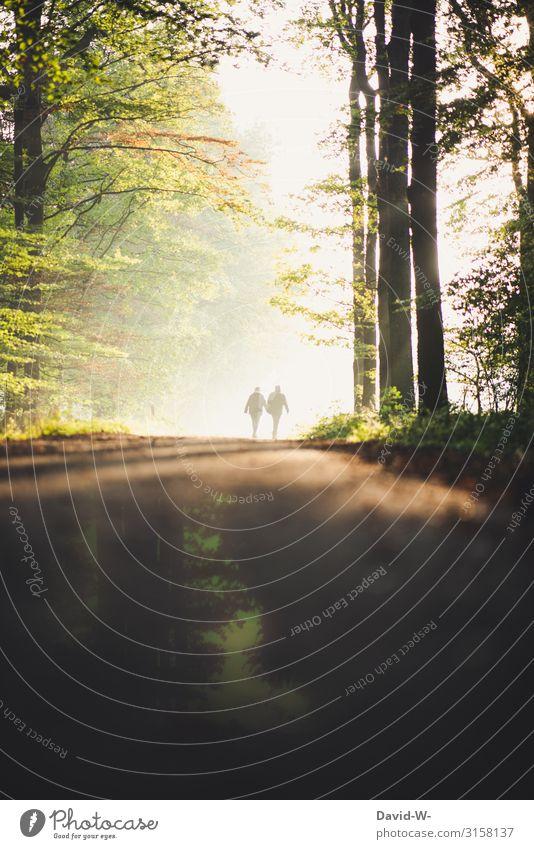 gemeinsam Zeit verbringen Frau Mensch Natur Mann schön ruhig Wald Ferne Erwachsene Leben Herbst Umwelt Liebe Wege & Pfade feminin Glück
